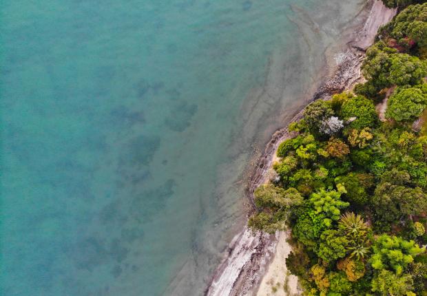 NZ Beach