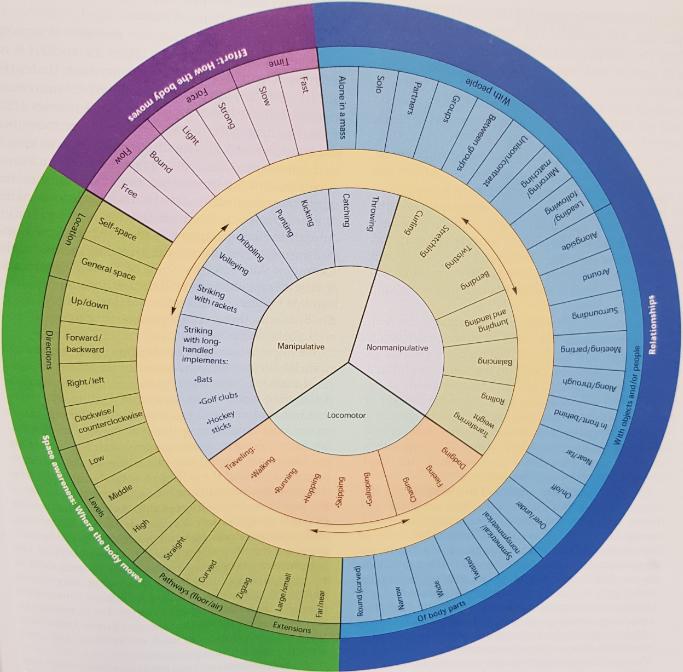 Movement Analysis Framework (Wheel)