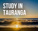 Study in Tauranga