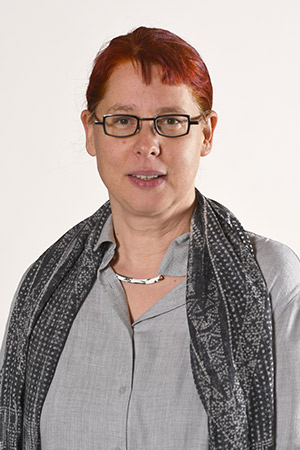 Associate Professor Annika Hinze