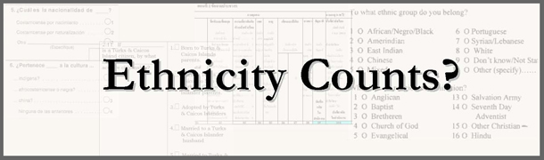 Ethnicity Counts Banner