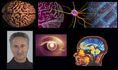 Neuroscience what is a phd thesis