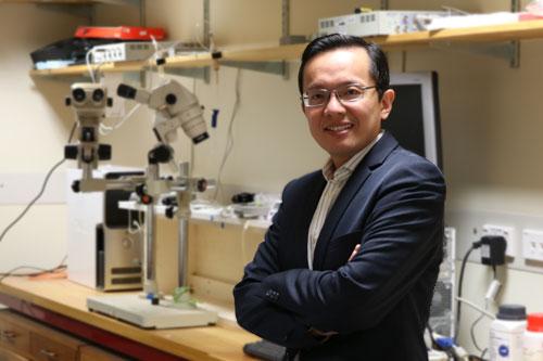 Yifan Chen